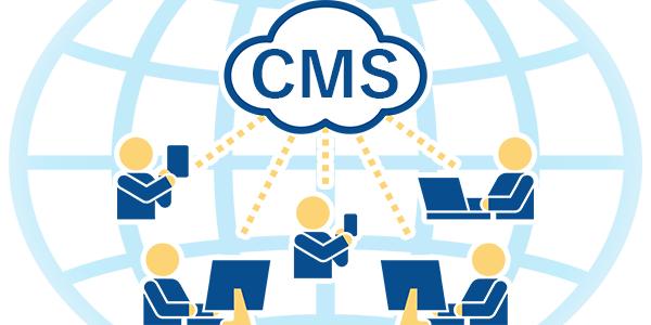 CMS制作とシステム開発の図